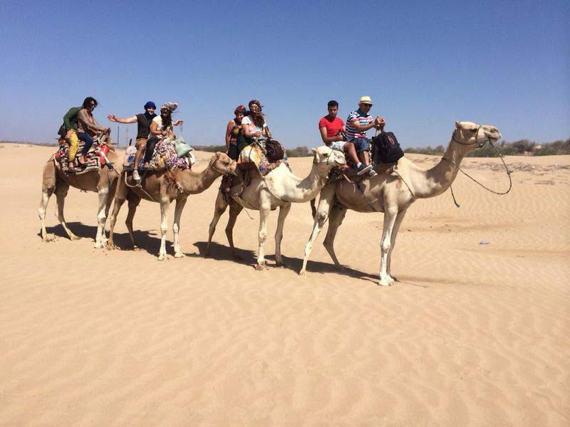 Izlet-na-kamilama,polazak-u-pustinju